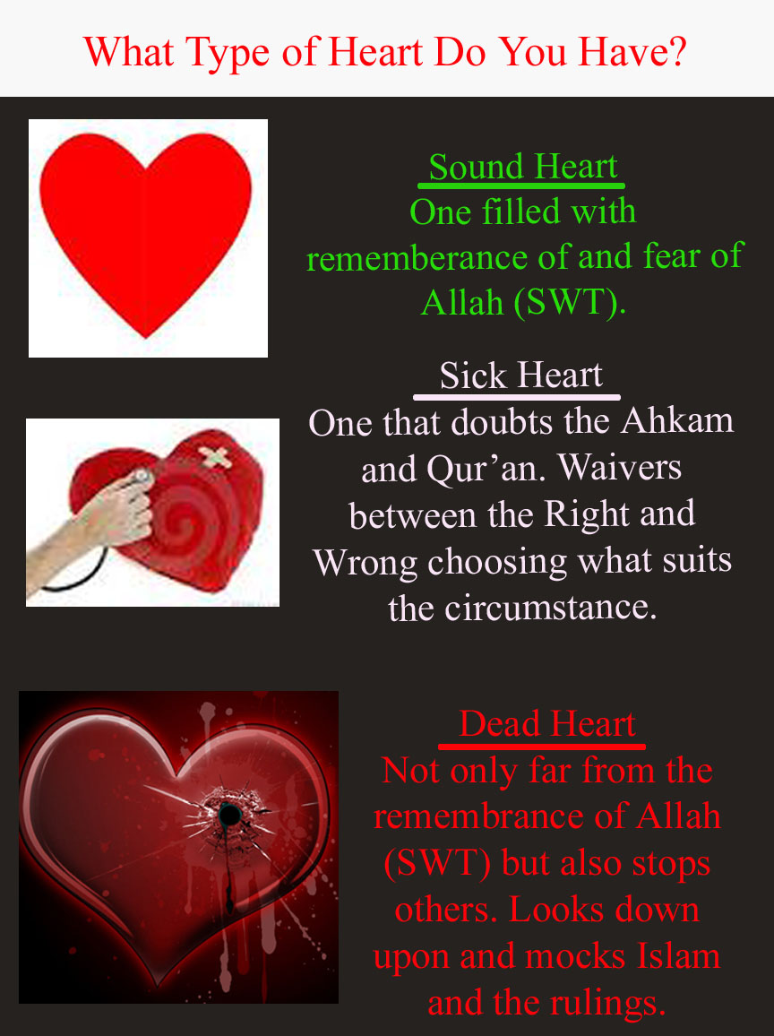 What Type of Heart Do You Have? | QR | Qur'an Reflections
